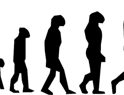 Shapeshifting Industries and the Inevitability of Evolution